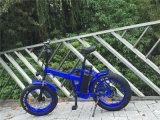 Le vélo électrique de gros pneu de cycle de l'Alaska E a fait bon accueil à Rseb507