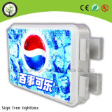 고품질 호리호리한 광고 Thermoforming LED 둥근 Lightbox 표시