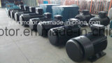 Alta efficienza di Ie2 Ie3 motore elettrico Ye3-315L2-2-200kw di CA di induzione di 3 fasi