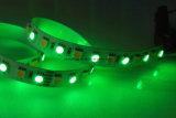 de LEIDENE 12V/24V 72LEDs/M RGBW/White Verlichting van het Lint