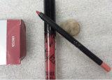 Губной помады пер карандаша вкладыша губы набора Lipgloss губы инструмент состава женщин губ лоска губы губной помады штейновой жидкостной установленный