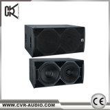 Doos van het Woofer van de Doos van de Spreker van China de PRO Audio Correcte Professionele