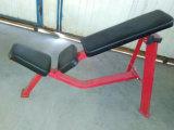 Concentrazione del martello della strumentazione di ginnastica, bicipite messo (SF1-1018)