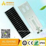 40watts LiFePO4 리튬 건전지를 가진 한세트 통합 태양 LED 가로등