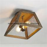 Le fil de poulet de Sailin pour la lumière décorent