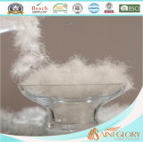 Venta al por mayor lavable blanca 50% plumón de ganso y pluma Gusset Almohada