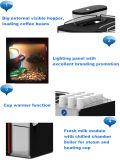 Gaia E2s - Machine à café de table pour bureau utilisant