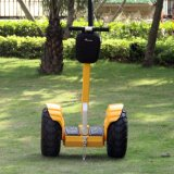 Persoonlijke Elektrische Blokkenwagen 2 van het Voertuig Autoped van het Saldo van het Wiel de Elektrische Zelf