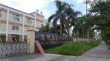 Puertas de acero del guardarropa 6 con el bloqueo de Digitaces