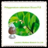 Extracto natural de Odoratum Druce del Polygonatum de la alta calidad