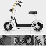 2016 mini motociclo elettrico caldo di vendita 800W (NY-E8)