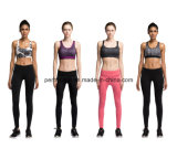 Mulheres de alta qualidade Fitness Wear Running Suit Ladies Garment