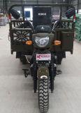 Abrir a motocicleta do triciclo da carga do corpo/três rodas