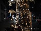 Decorazione di festa della via dell'indicatore luminoso della rete dell'albero del LED