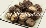 Fungo di Shiitake liscio secco massa con la verdura della protezione 2-5cm