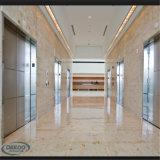 Da venda elevador estável quente do passageiro do elevador do edifício residencial melhor