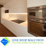 Gli armadi da cucina freschi di nuovo disegno si dirigono la mobilia (ZY 1037)