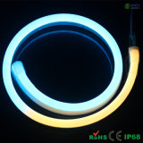 24V 10 * 20mm Digital RGB LED Neon Flex con 60PCS SMD5050