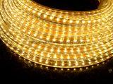 Ce RoHS indicatore luminoso luminoso eccellente della corda 127V/di 220V SMD3014 LED (SMD3014-120)
