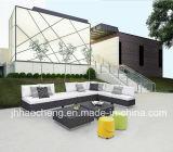 Meubles extérieurs de rotin de jardin des meubles Hc-W-S23 extérieurs