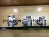 Válvula de cheque roscada de oscilación del acero inoxidable