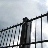 Загородка ячеистой сети двойника 868 стены границы сваренная обеспеченностью с сразу фабрикой