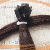 인간적인 Falt 끝 못에 의하여 염색되는 Remy 머리 온난한 브라운 융해 머리 연장