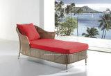屋外の余暇の庭の藤のベッド