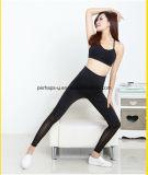 A aptidão das mulheres da alta qualidade arfa calças do exercício das caneleiras da ioga