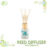 リードDiffuserかNatural Aromatherapy/Car Air Freshener Air Purifier Gift Set