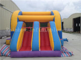 Neues Commercial Rainbow federnd Castle mit Double Slide für Sale