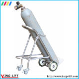 Faltbare Edelstahl-Zylinder-Handlaufkatze Ty120b