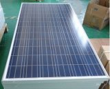 250W Solar Panel avec Aluminium Alloy Frame Poly Solar Panel pour Solar Power System