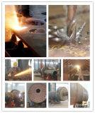 Facoty поставляя уголь 1-10ton/древесину/ый биомассой боилер пара