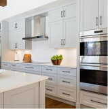 Het moderne Modulaire Houten Meubilair van de Keuken voor Noord-Amerika en Euro Markten
