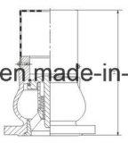 Form Iron Foot Valve mit Flanged Ende (ANSI/DIN/JIS/BS)
