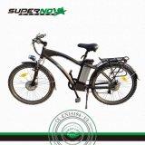 リチウム電池が付いている250W36V電気自転車