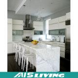 Glatte weiße Lack-Nordamerika-Küche-Schrank-Möbel-Entwürfe (AIS-K142)