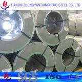 Катушка PPGI покрынная цветом стальная в стальных поставщиках