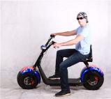 Bici elettrica di Harley, bici elettrica della gomma grassa