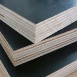 9 Falte-Marinefurnierholz mit schwarzem Film für Gebäude-Arbeit