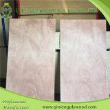 Madera contrachapada material de la piel de la puerta de Okoume del grado de Bbcc del álamo de Linyi