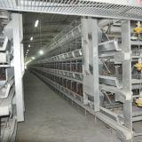 鶏の層の自動ケージの養鶏場装置
