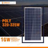 Poli comitato solare solare delle pile 320W 325W PV di rendimento elevato