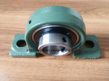 Großhandels zu Distributors Uc Ball House Pillow Block Bearing Ucp