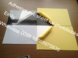 Hoja de PVC Adhesivo de ambos lados de papel amarillo de 0,5 mm