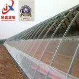 Serra solare del film di materia plastica per la piantatura di verdure