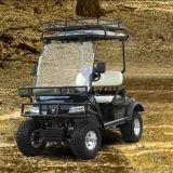 전기 골프 Buggy 실용 차량 (DEL2022DL, 2-Seater)