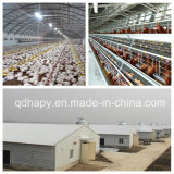 La ferme de poulet préfabriquée a jeté avec le matériel Breeding