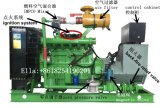 De Generator van het Biogas van het Landbouwbedrijf van de koe 20kw